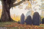 Historic Cemetery in Petersham, MA