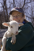 Woman Farmer Holding a Young Merino Lamb