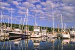 Robin Hood Marina, Maine