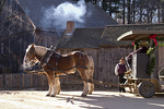 Draft Horses at Old Sturbridge Village