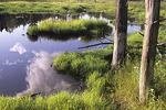 Beaver Pond in Phillipston, Massachusetts