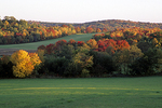 Green Fields and Fall Colors