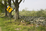 Yellow Road Sign and Apple Trees