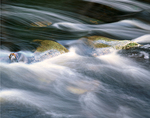 Fast Flowing Water in a Rocky Brook