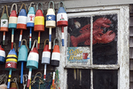 Lobster Buoys Hanging on a Fishing Shack