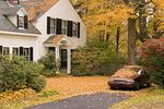 Fallen Leaves on Home