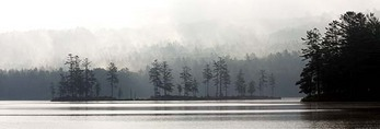 Tully Lake on a Foggy Morning - Panorama