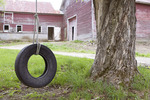 Old Abandoned Barn and a Tire Swing