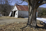 Old Dilapidated Garage and an Old Maple Tree