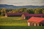 Three Tobacco Barns