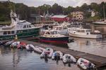 Boats Docked in Camden Harbor