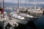 Boats in Newport Harbor