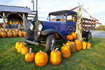 Old Chevrolet Truck and Pumpkins