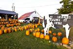New England Farm Stand