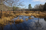 Otter River Wildlife Management Area