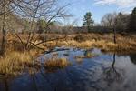Otter River Wildlife Management Area