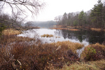Late Fall Day At A Beaver Pond