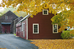 Red Barn With Tree and Yellow Leaves