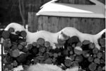 Firewood Stacked for the Wood Stove
