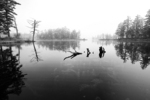 A Foggy Morning at Tully Lake