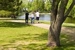 People Walking In Elm Park
