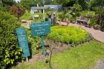 Berkshire Botanic Garden