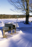 Rural Mailboxes Along the Snowy Roadside