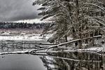 Fresh Snowfall on Skunk's Misery Wetland