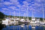 Pleasure Boats Docked at Robin Hood Marina