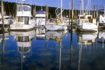 Boats ath Robi Hood Marina
