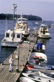 Boats Docked at Bailey Island