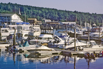 Boats In Boothbay Harbor