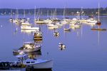 Early Morning Light Shines on the Boats at Boothbay Harbor