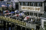 Lobsterman's Coop