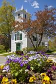 Springtime flowers in Ashfield Massachusetts