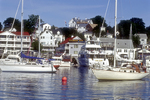 Sailboats Moored in Boothbay Harbor