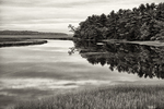 Scarborough Marsh in Black and White