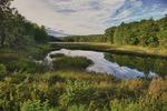 Beaver Pond at the Old Stone Bridge