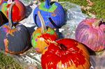 Children's painted pumpkins at the Ashfield Fair