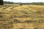 Haying in the summer is a regular chore on many Massachusetts farms