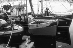 Fishing boats tied up in Provincetown Harbor, MA. (black and white)