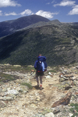 Male hiker on the trail to Mt Washington