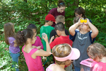 Children learning about nature in the outdoor classroom