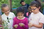 Kids learning about nature outdoors