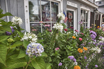 Beautiful flower garden outside a shop in Rockport, MA