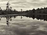 Photo of the Tully River from a canoe