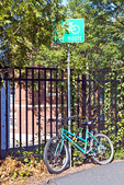 Green bike chained to a pole