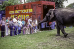 Clyde Beatty, Cole Brothers Circus - elephant being fed by people