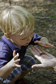 Little boy looks at a red eft held in his mother's hand.