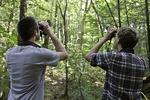 Two birdwatchers looking through binoculars